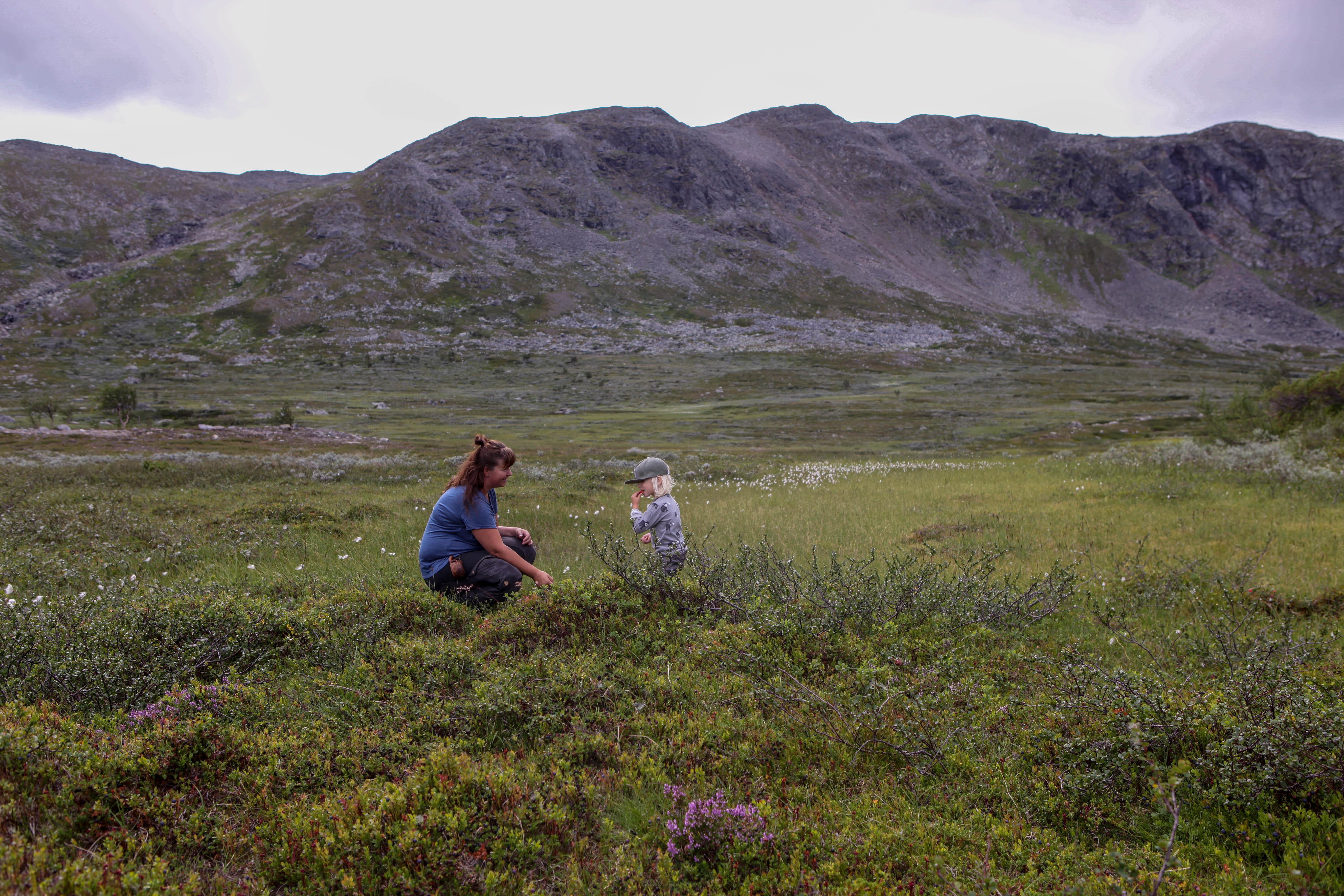 mamma och barn i fjällen plockar hjorton