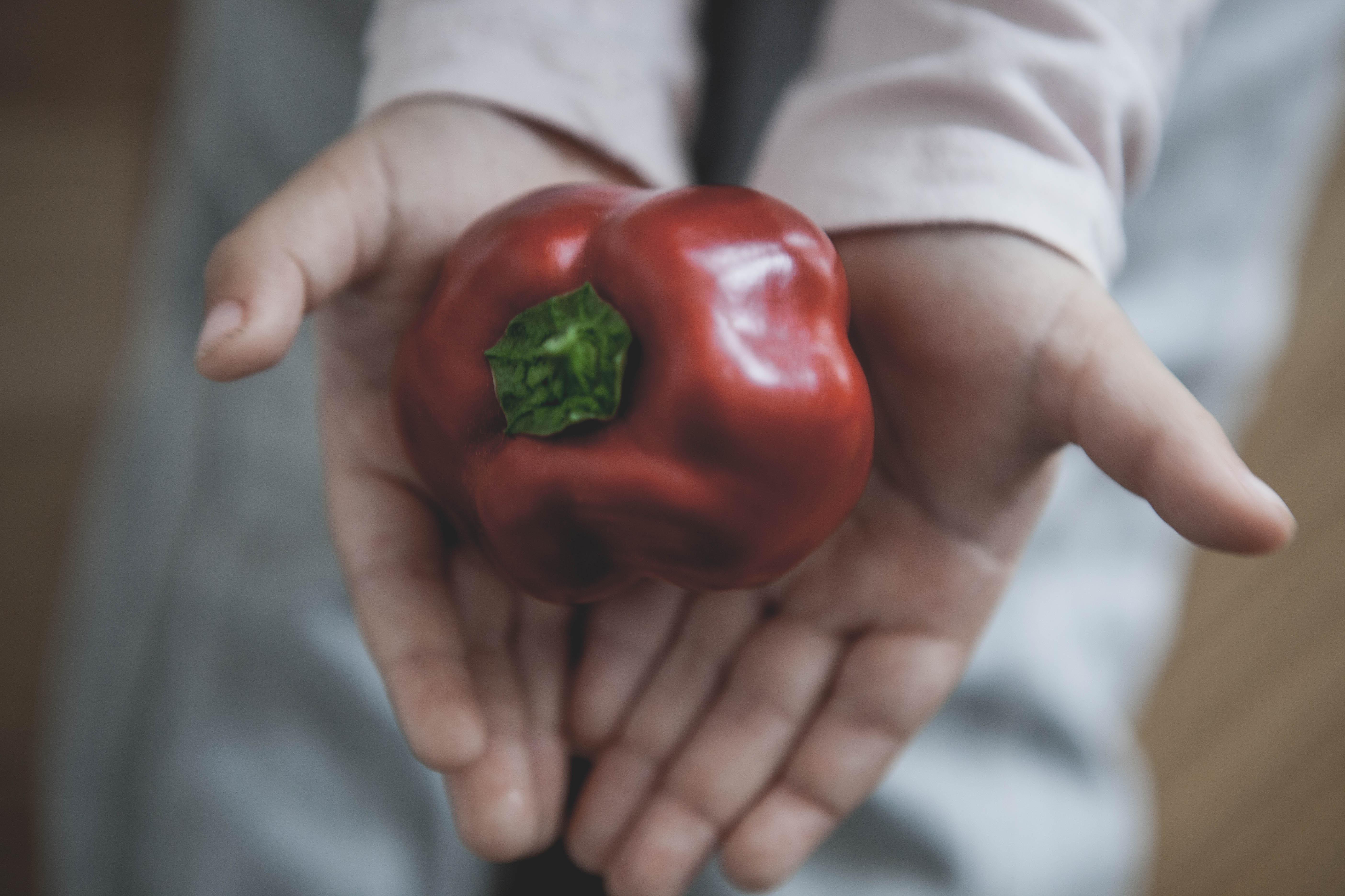 Röd paprika i små händer