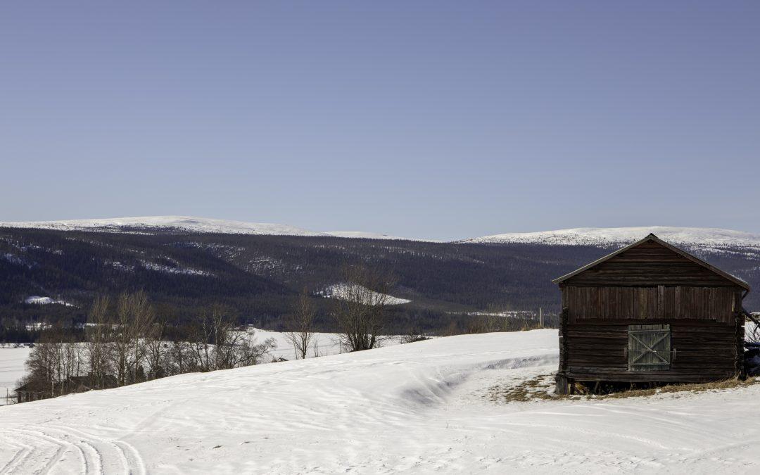 Fjällen, skidor, familj – semester