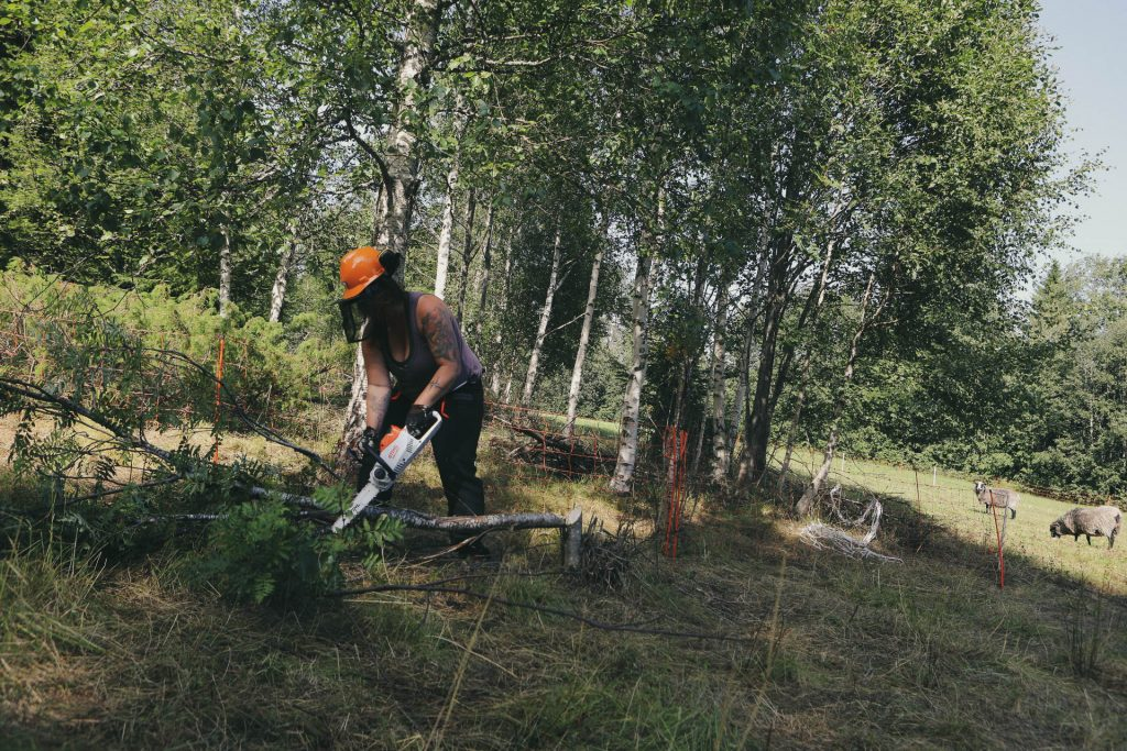 Jag fäller träd